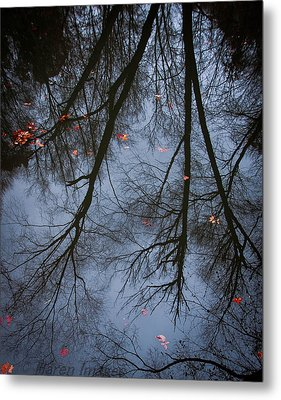 A Few Leaves Left Metal Print by Haren Images- Kriss Haren