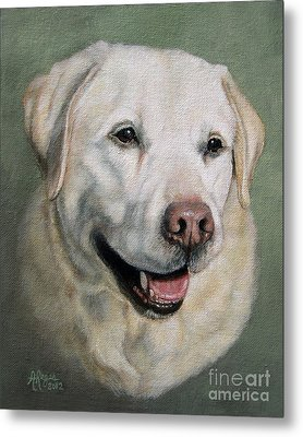 A Fine Old Lady Yellow Labrador Portrait Metal Print