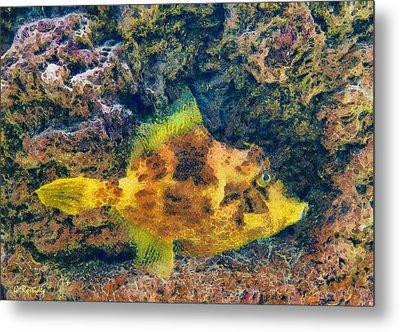 A Fish Called Wanda Metal Print by George Rossidis