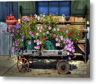 A Flower Wagon Metal Print by Mel Steinhauer