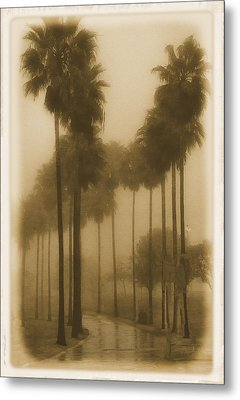 Metal Print featuring the photograph A Foggy Day by Joseph Hollingsworth