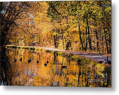 A Golden Afternoon Metal Print