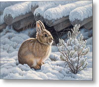 A Good Place - Bunny Metal Print by Paul Krapf