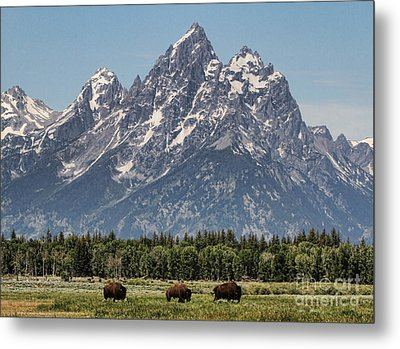 A Grand View Metal Print by Edward R Wisell