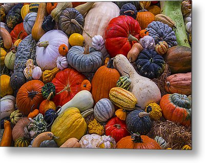 A Great Harvest Metal Print by Garry Gay