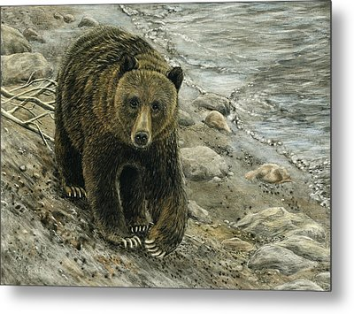 A Grey And Grizzly Day Metal Print by Sandra LaFaut