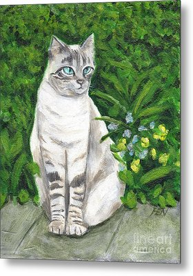 A Grey Cat At A Garden Metal Print