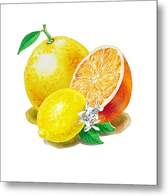 Metal Print featuring the painting A Happy Citrus Bunch Grapefruit Lemon Orange by Irina Sztukowski