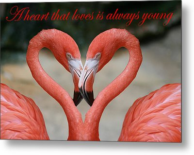 A Heart That Loves Is Always Young Metal Print