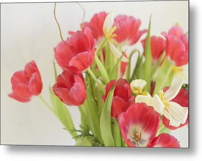Metal Print featuring the photograph A Hint Of Spring by Rosemary Aubut