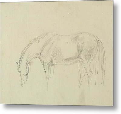 A Horse Grazing  Metal Print by Sawrey Gilpin