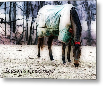 Metal Print featuring the photograph A Horse's Season's Greeting Card by Polly Peacock