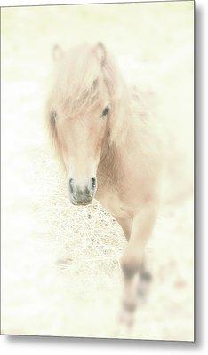 A Horse's Spirit Metal Print by Karol Livote
