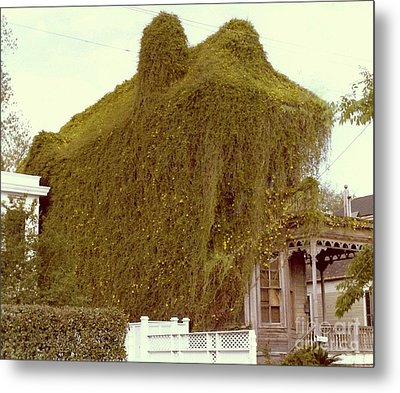 A House Is A Home Is A House Of Vine Metal Print by Michael Hoard
