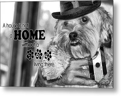 Metal Print featuring the digital art A House Is Not A Home Without A Dog Living There by Kathy Tarochione