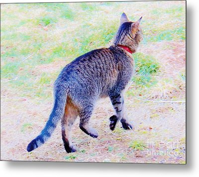 A Hunting We Will Go Metal Print by Judy Via-Wolff