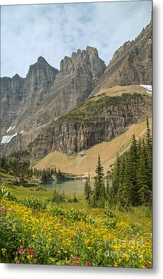 A Lake Near Iceberg Lake Along The Trail Metal Print by Natural Focal Point Photography