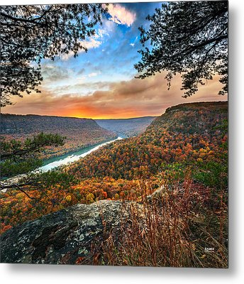 A Late Autumn View Metal Print