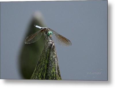 A Launch Pad Metal Print by Yvonne Wright