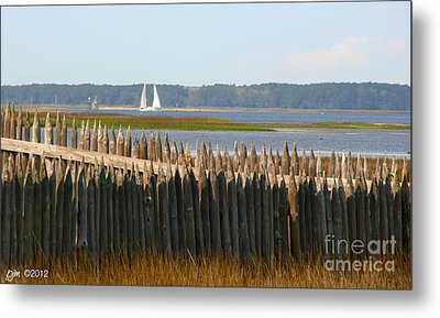 Metal Print featuring the photograph A Lazy Morning Along The Mighty Cape Fear River by Phil Mancuso