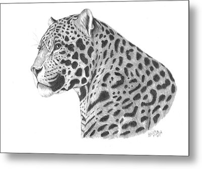 A Leopard's Watchful Eye Metal Print