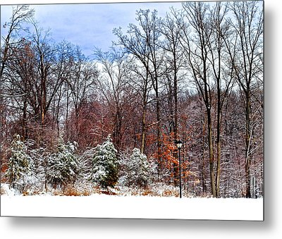 A Light Dusting Metal Print by Frozen in Time Fine Art Photography