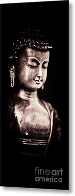 A Light In The Dark Metal Print by Tim Gainey