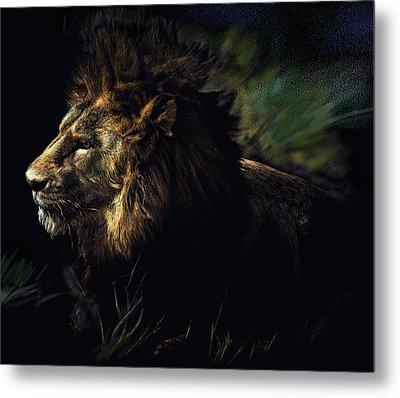 A Lion #1 Metal Print by John Norman Stewart