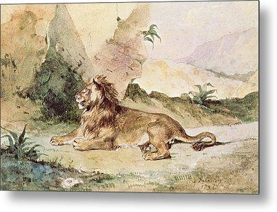A Lion In The Desert Metal Print by Ferdinand Victor Eugene Delacroix