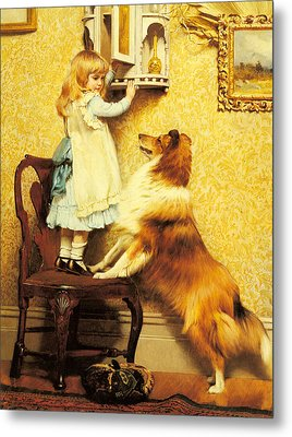 A Little Girl And Her Sheltie Metal Print by Charles Burton Barber