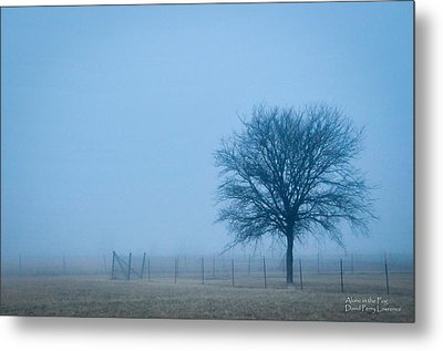 A Lone Tree In The Fog Metal Print by David Perry Lawrence