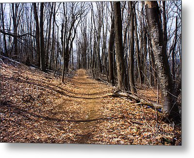 A Lonely Road Metal Print