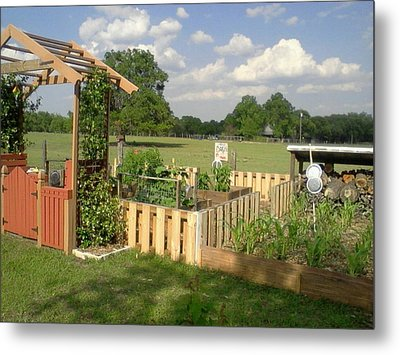 A Look At Growing Garden Metal Print