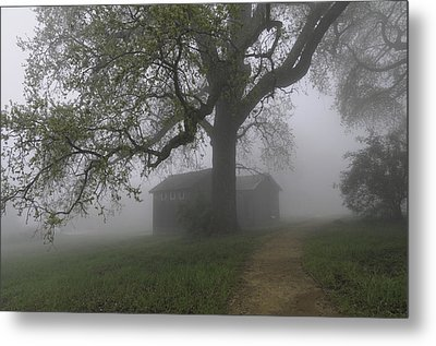 A Look Back In Time Metal Print by Lynn Bauer