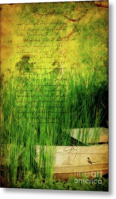 A Love Letter From Summer Metal Print by Lois Bryan