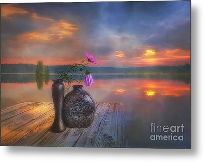 A Lovely Morning Metal Print