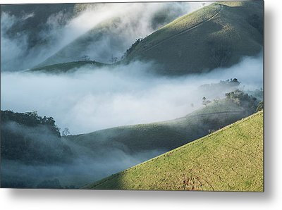 A Low-hanging Mist In The Early Morning Metal Print