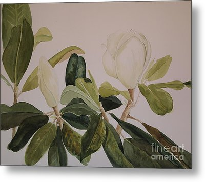 Metal Print featuring the painting A Magnolia Duet by Nancy Kane Chapman