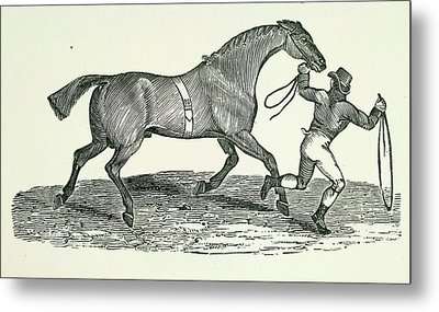 A Man And Horse Metal Print