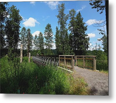 A Man's View Of Red Tail Lake Metal Print by Lizbeth Bostrom