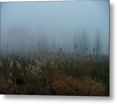 A Morning Fog Metal Print