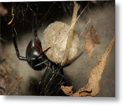 A Mothers Den Metal Print by Melanie Lankford Photography
