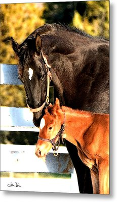Metal Print featuring the photograph A Mother's Love by Joan Davis