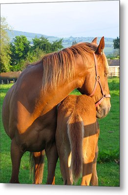 A Mother's Love Metal Print by Suzanne Oesterling