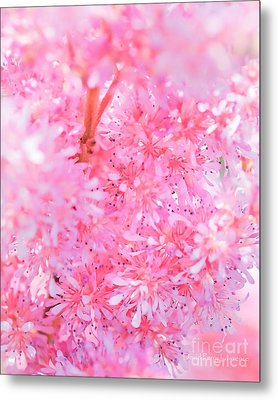 A Natural Pink Bouquet Metal Print by David Perry Lawrence