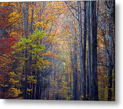 A Nature Painting Metal Print by J Cheyenne Howell