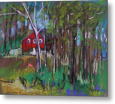 A New Coat Of Paint Metal Print by John Williams