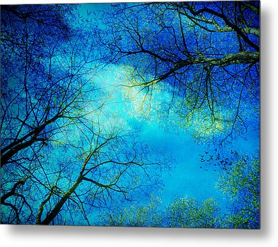 A New Day Metal Print by Angela Bruno