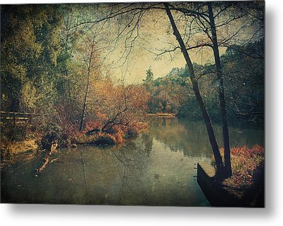 A New Day Another Chance Metal Print by Laurie Search