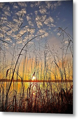 A New Day Begins ... Metal Print by Juergen Weiss